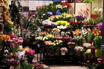 Купить цветы ландыши санкт-петербург официальный сайт — img 9